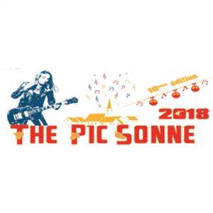 Logo PicSonne
